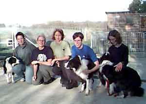Dog Carer Au Pairs Border Collies ready for Crufts