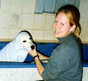 Dog Carer Au Pairs Golden Retriever Timothy being bathed by Jenny
